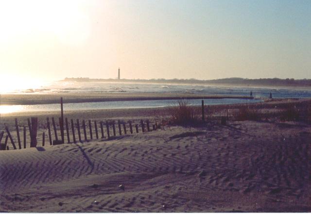 beachfence