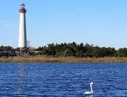 Cape May Vacation Rentals Beach Homes Condos More Homestead Real Estate